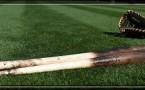 baseball bat and gloves