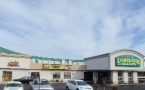 Ziggies Cafe Official Site Photo