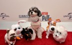The Secret Life Of Pets Toy Line Reveal At Toy Fair