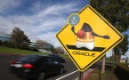 Traffic sign in front of Oracle headquarter in California showing the Java logo.