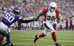 Arizona Cardinals running back Jonathan Dwyer (20)